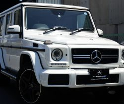 New Stock Car!! MercedesBenz G350D Luxury PKG